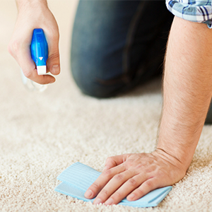 Best Stain Removal Practices for Carpets and Rugs